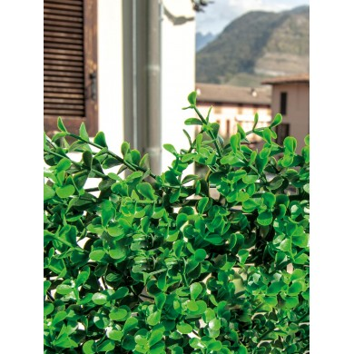 SIEPE ARTIFICIALE - DIVY 3D PANEL BUXUS INTENSE