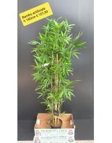 Bambù artificiale ht 160 cm