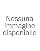 BOUQUET DI ROSE ROSSE/FIORI FRESCHI E VERDE DECORATIVO IN CONFEZIONE REGALO - CONSEGNA SU ROMA COMPRESA NEL PREZZO*